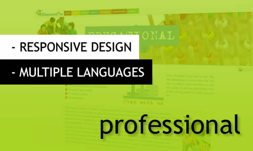 MR Websites multilingual development & design